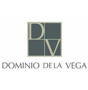 dominiovlogo